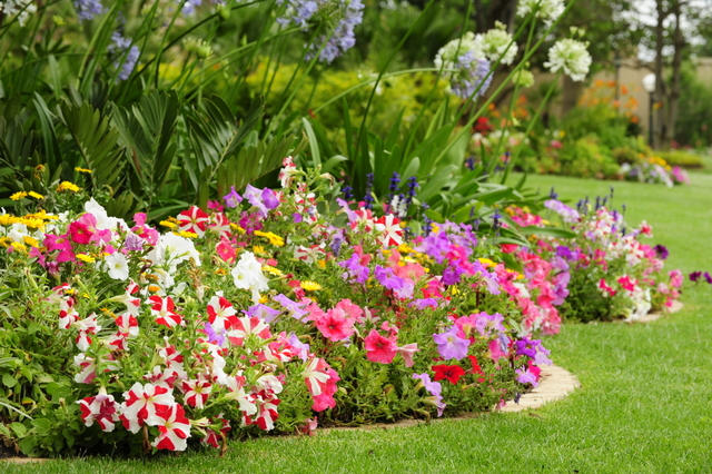 Colours in every shade fresh colour ideas life is a garden for Small colourful garden ideas