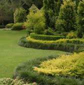 10 ideas for a garden revamp life is a garden for Small garden designs south africa