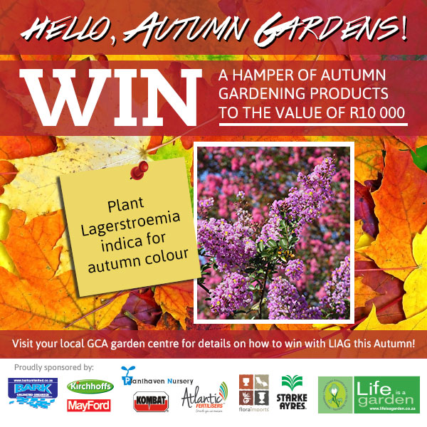 LIAG_Hello_Autumn_Gardens_Competition_Post_May_v1_02