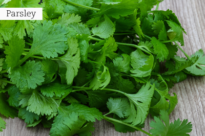 Parsley_lr_with_text