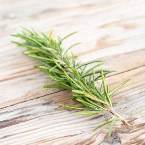 Rosemary-Thumb