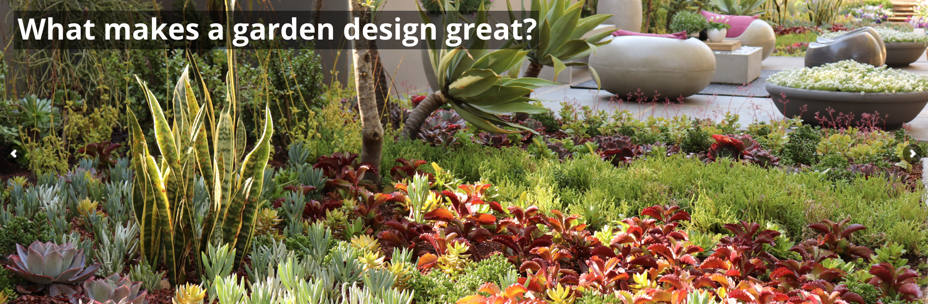 DIY Garden Design - Online Course - Life is a Garden