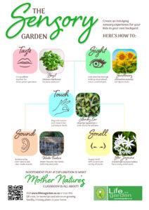 LifeisaGarden_AUGSensoryInfographic-Poster