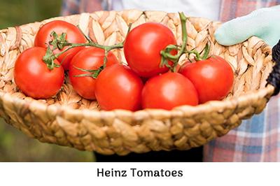 Life is a Garden - Heinz