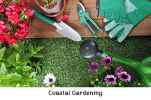 Life_is_a_Garden_OCT-InTheGarden-Coastal
