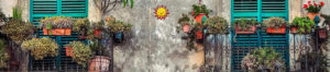 Life is a Garden – Balcony Gardening