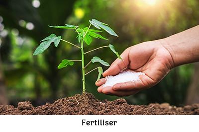 Life is a garden , January in the garden fertiliser