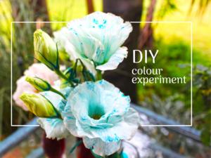 DIY colour experiment