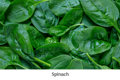 Spinach, February checklist